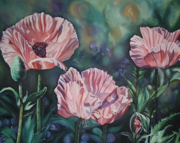 Salmon Poppies