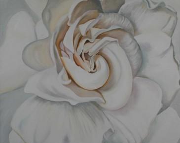 White Gardenia I