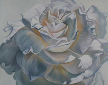 White Gardenia III